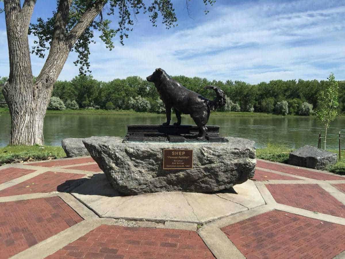 Shep Memorial, Fort Benton