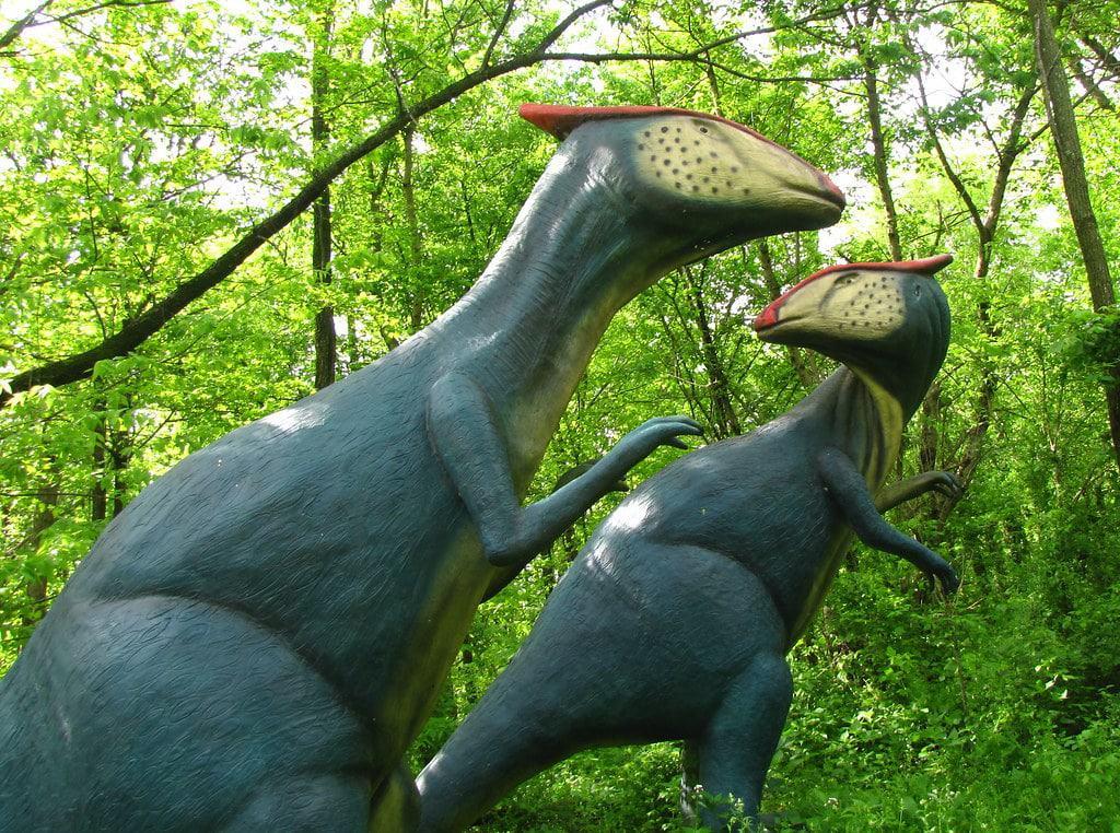 Dinosaur World, Ciudad Cueva