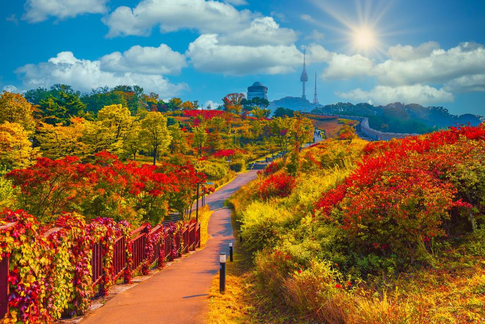Parque Namsan